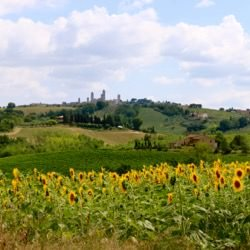 The Heart of Tuscany Cycling Tour 10 Night
