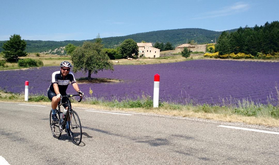 Cycling Through Provence Lavender