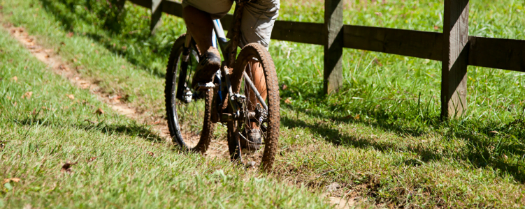 Asheville North Carolina Mountain Biking trails