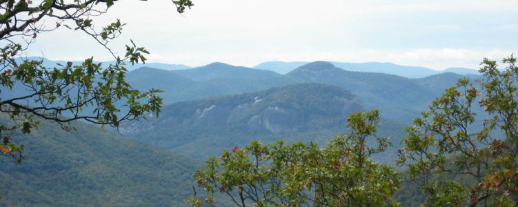 Looking Glass Rock near Asheville North Carolina
