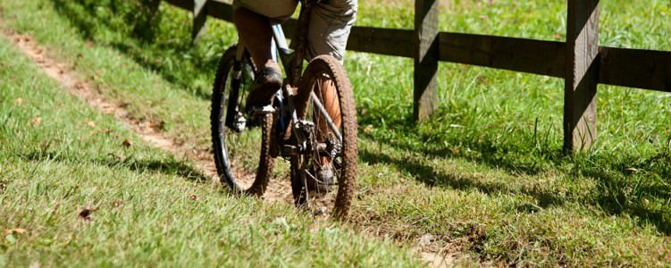 Mountain Bike Tours in North Carolina