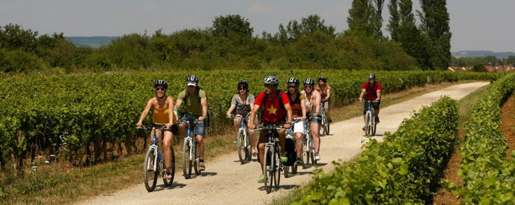 Burgundy Bicycle Tours