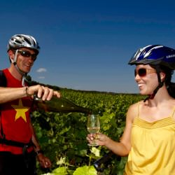 A Taste of Burgundy Bicycle Tour 5 Night