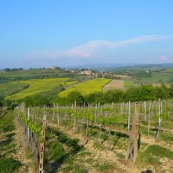 Relaxed Tuscany Bicycle Tour 7 Night