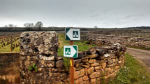Riding markers throughout Burgundy