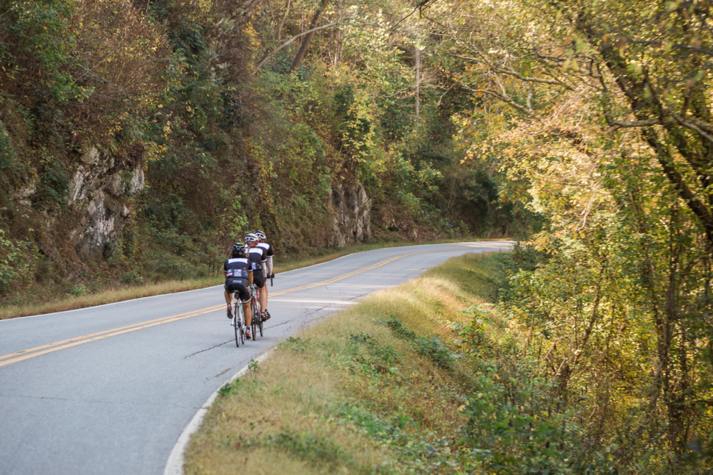 Road Biking in Asheville