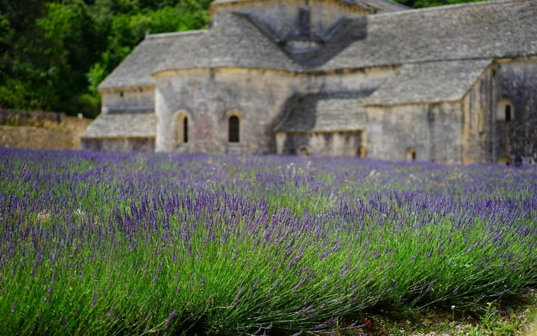 Top 5 Can't-Miss Experiences in the Luberon